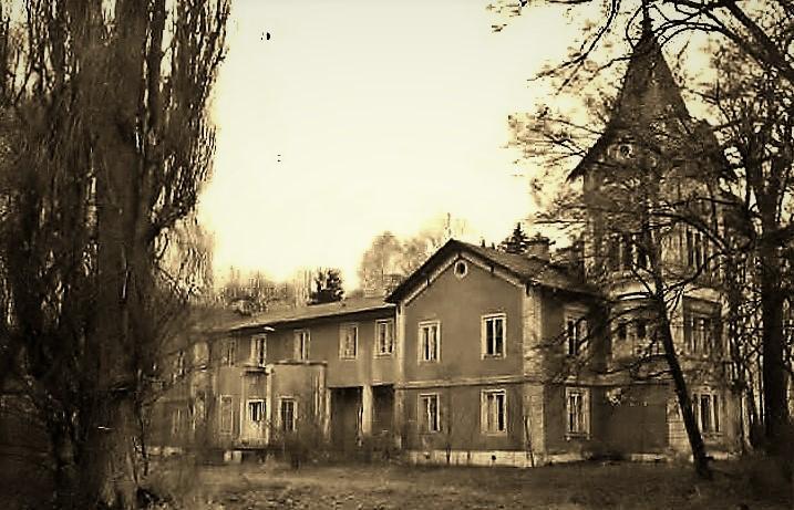 Pałac Kobylin historia